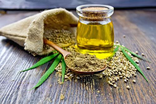 Vers l'âge d'or du biocarburant de chanvre biologique?